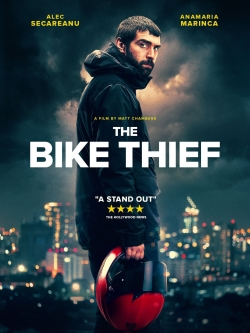 The Bike Thief